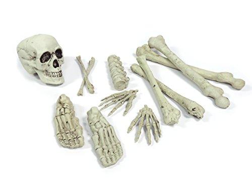 Darice 3112 379 12Piece Bones Seasonal