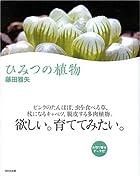 ひみつの植物