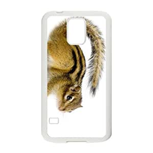 Attractive Squirrel Hight Quality Plastic Case for Samsung Galaxy S5
