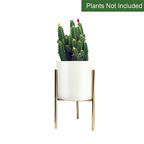 CUUCOR 3.1 inch Modern Garden White Ceramic Round Plant pot with Metal Stand, Mid Century Small Indoor Plant Holder for Air Plants/Succulent Plants/Artificial Flowers/Mini Cactus (White + (Mid Century Modern Ceramic)