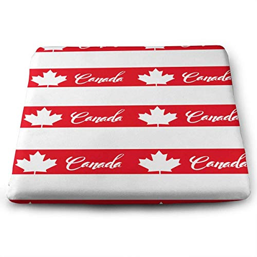 Dinette Maple - B. Bone Seat Cushion for Office Chair, Canada Maple Leaves Home Office Decoration Square Seat Cushion Seat Chair Pad for Truck Driver,Kitchen Chairs,Car,Office