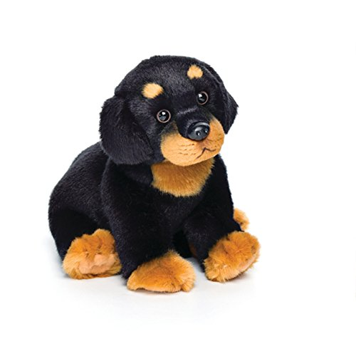 Small Rottweiler Dog Black with Brown Children's Plush Stuffed Animal Toy ()
