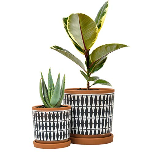 Set of 2, Geometric Seamless Design Terracotta Planter Pot, 4 Inch and 6 Inch, Ceramic Plant Pot with Drainage Hole and…