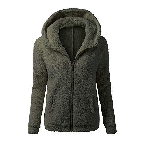 Fmeijia Autumn Winter Fashion Ladies' Pure Color Lambs Wool Coat Keep Warm Zipper Jacket Long Sleeves Hoodies
