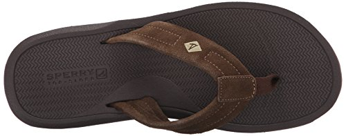 Sperry Topp-sider Menns Sharktooth Tanga Brun