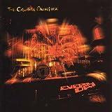 Everyday (2LP+MP3) [Vinyl LP]