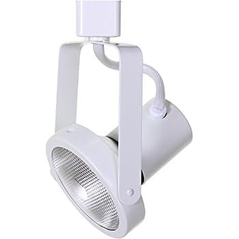 direct lighting 50005 white par30 gimbal ring line voltage track