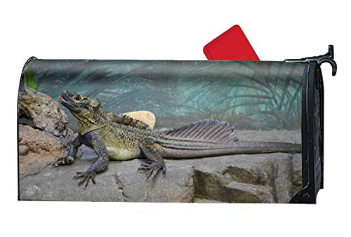 Tymeihao Animal Lizards Sailfin Mailbox Makeover - Magnetic Cover