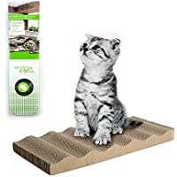 ALL FOR PAWS Modern Cat - Single - Cat Scratcher