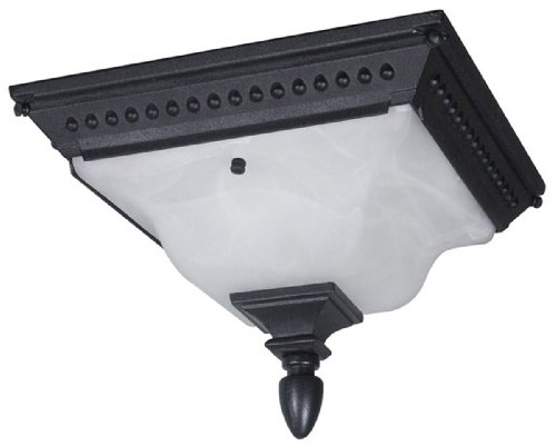 - Special Lite Products Abington F-2753-BLK Flush Mount Light, Black