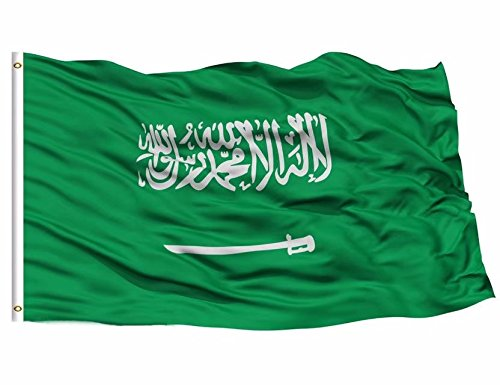 DFLIVE- Saudi Arabia 3x5 ft Printed Polyester Fly Flag Banner with Brass Grommets