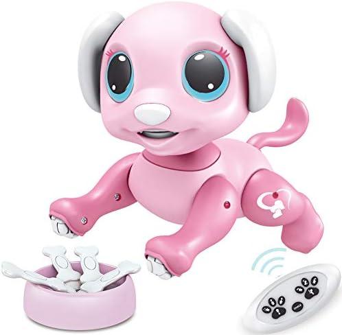 BIRANCO Updated 2019 Smart Puppy product image