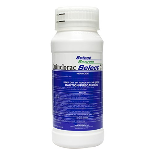 Select Source Quinclorac 75 Herbicide - 1 Pound (Drive 75, Quinstar) by by Select Source