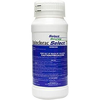 Quinclorac 75 Herbicide - 1 Pound (Drive 75, Quinstar) by Select Source