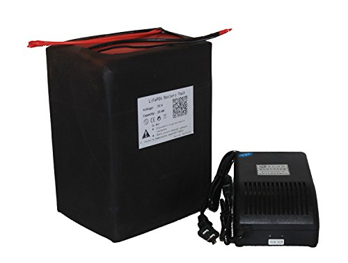 72V-15AH LIFEPO4 BATTERY PACK POWER FOR EBIKE NEW CELL WITH A CHARGER
