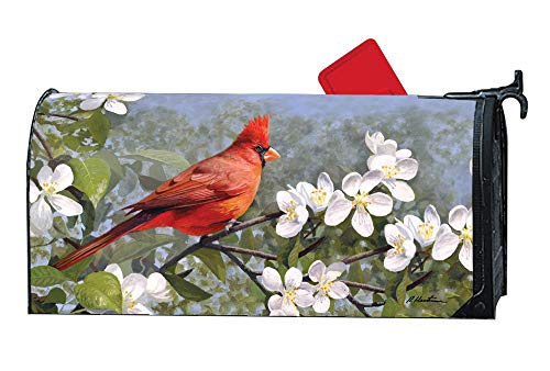 Weather Vinyl Mailbox Cover - MailWraps Studio M Cardinal in Blossoms Decorative Spring Summer Birds Oversized, The Original Magnetic Mailbox Cover, Made in USA, Superior Weather Durability, Large Size fits 8W x 21L Inch Mailbox