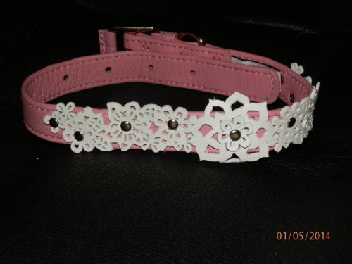 Oscar de la Renta Pink Leather Pet Collar & Leash Set (Medium)