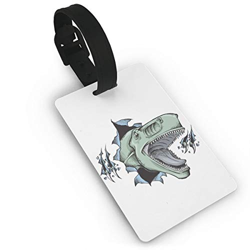 - Mini Luggage Tag Dinosaur PVC Business Card Holder for Baggage Bag Name Address ID Label Travel Identifier Accessories
