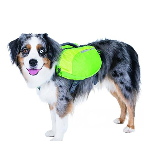 DUPET Quick Release Backpack Saddle Bag Harness Carrier Dog Accessory Rucksack Walking Canvas with Handle and D-Ring for Hiking Traveling Camping Walking by DUPET
