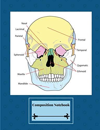Composition Notebook: Labeled Human Skull Diagram - Facial Bones - Blue - Bone Occipital Skull