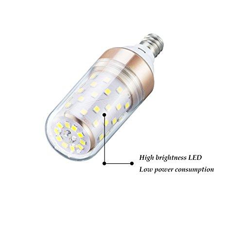 Base G13 Sunlite T8//LED//3//11W//IS//30K LED 3 Fluorescent 25W Equivalent T8 Plug /& Play Light Bulb with 3000K Medium Bi-Pin Warm White