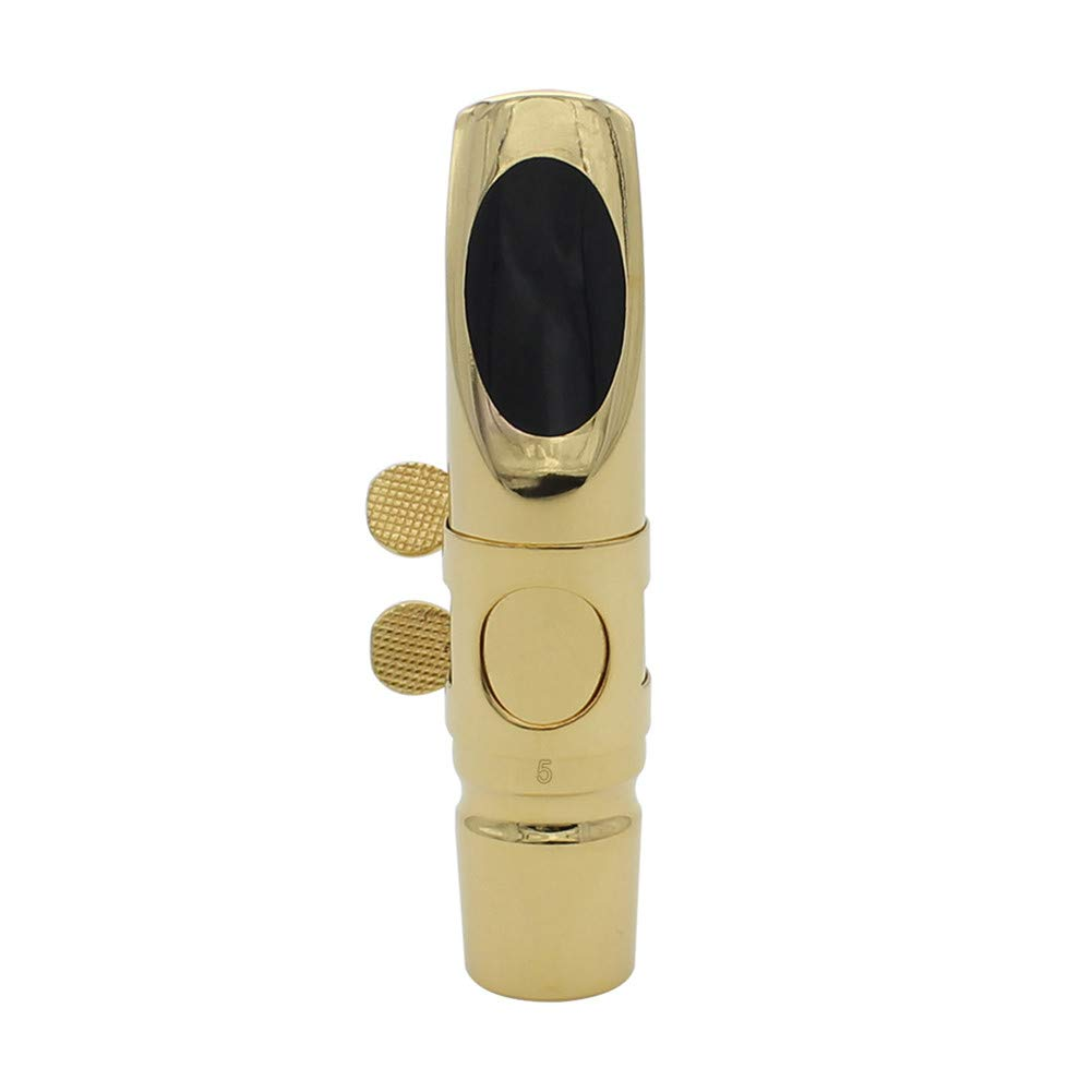 BEESCLOVER Flute Head Set for Alto Saxophone E-flat Hand-polished Professional Metal Blowing Mouthpieces with Flute Head Cover Dental Pad Pure Sound 6 JAZZ ALTO 6