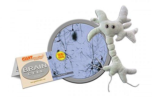 Giant-Microbes-Brain-Cell-Neuron-Plush-Toy