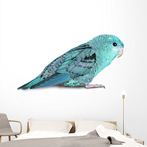 Wallmonkeys Blue Lineolated Parakeet Wall Decal Peel Stick Animal Graphics (72 in W x 48 in H) WM280385