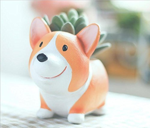 SUN-E Cute Animal Shaped Cartoon Home Decoration Succulent Vase Lovely Corgi Dog Flower Pots (style-A) ()