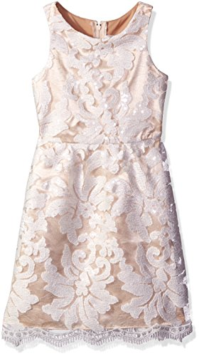 Rare Editions Girls' Big Sequin Embroidered Lace Dress, White/Nude, 7