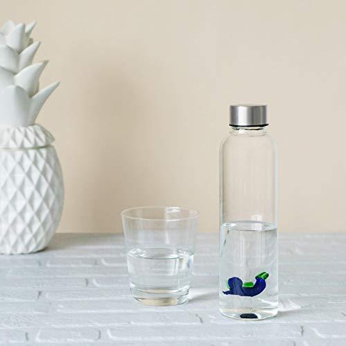 Balvi Bottiglia Scuba per Acqua 0,5 L Tappo antigoccia in Acciaio Inox Ideale Comodino e Ufficio Borosilicato 23 cm