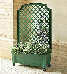 Amazon Com Planter With Trellis And Self Watering Reservoir In