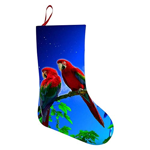 69PF-1 Christmas Stocking Scarlet Macaws Fool Moon Fireplace Decoration Socks Candies Toys Gifts Party Accessory ()