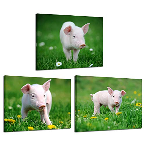 iKNOW FOTO 3 Piece Canvas Wall Art Pink Little Pigs on The Grass Picture Prints Farm Animal Photos Modern Home Decor Stretched and Framed Ready to Hang for Kids Room 12x16inchx3pcs (Pig Picture)