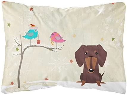 Caroline's Treasures BB2603PW1216 Between Friends Dachshund Chocolate Canvas Fabric Decorative Pillow