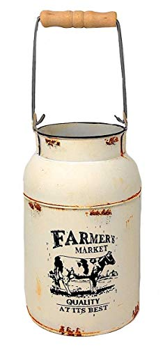 Farmers Market Decorative Water Milk Can Jug Metal Galvanized Decor Country Vase Succulent Flowers Rustic Cream 9