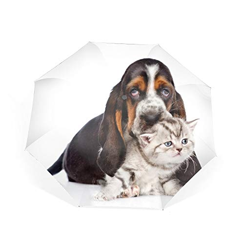Automatic Compact Travel Umbrella with Reverse and Safe Lock Design, Teflon Auto Open Close Folding Strong Windproof Animal Cat Dog Kitten Basset Hound Umbrella