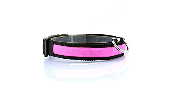Kingnew LED Nylon Perro Gato Collar de Seguridad Pet Light Up Luz Intermitente Bombilla (M, Color Blanco)