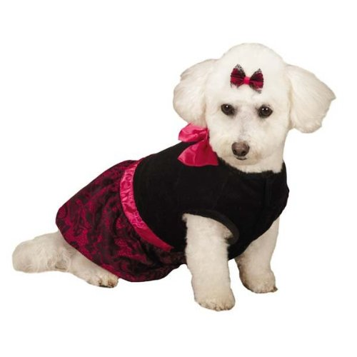 Zack & Zoey Heritage Collection Lace Print Dress for Pets Medium Black