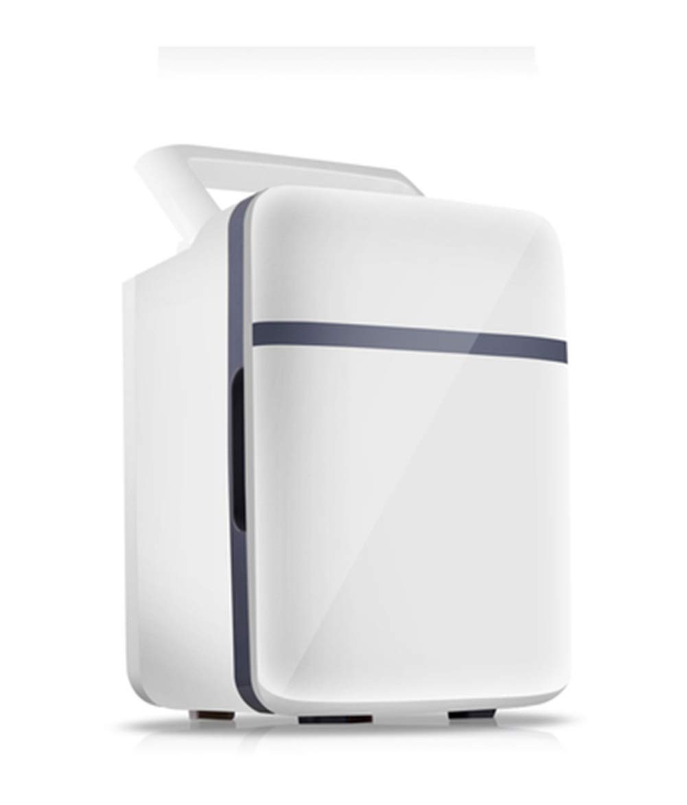 QPSGB 車用冷蔵庫車用冷蔵庫家庭用小型冷蔵庫車の家兼用冷暖房インキュベーター (色 : A)  A B07RRQ3V25