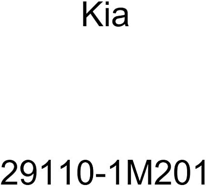 Genuine Kia Under Cover 29110-1W500