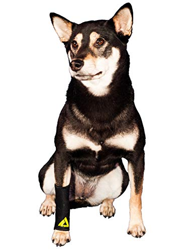 Dog Canine Front Leg Compression Brace Wrap Sleeve Protects Wounds Brace Heals & Prevents Injuries and Sprains Helps instability caused by Arthritis Veterinary Approved by My Pro Supports