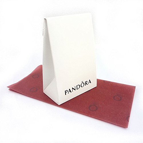Pandora 791182 Silver Globe Clip New Gift Box for Bead Great Gift for Mom, Daughter Mother