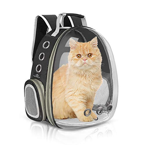 Bigeyescute Cat Backpack Carriers, Pet Carrier Backpack for Travel, Hiking and Outdoor Use (Black)