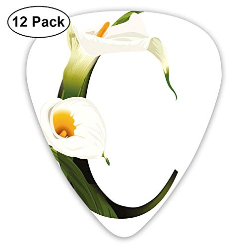 Guitar Picks - Abstract Art Colorful Designs,White Lily Flower Nature Inspirations Art Alphabet Letter C ABC Print,Unique Guitar Gift,For Bass Electric & Acoustic Guitars-12 ()