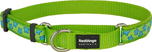 Red Dingo Martingale Lime Green with Turquoise Stars Collar, Medium-Large