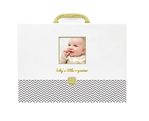nt Organizer - Briefcase File Keeper to Store Baby's Records, Makes Great Gift for New Parents or Addition to Baby Shower Registry ()