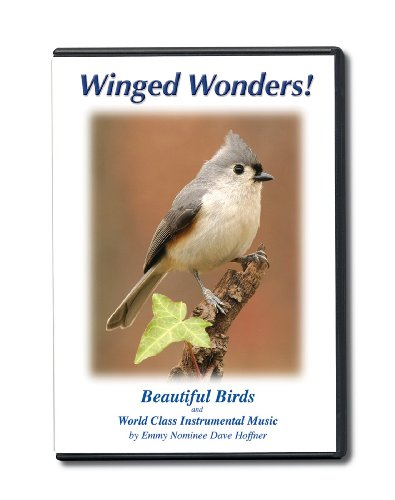 Winged Wonders! Beautiful Birds and World Class Instrumental Music (Mid Spring Watch)
