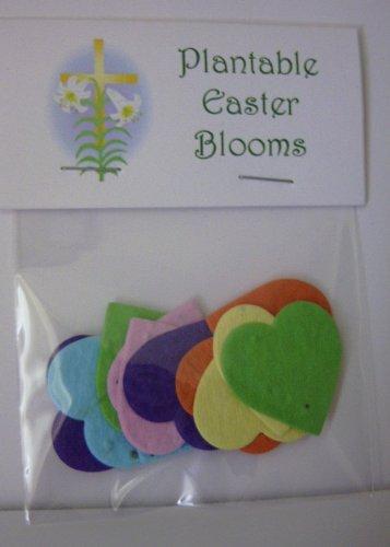Set of 5 Plantable Easter Wildflower Heart ()