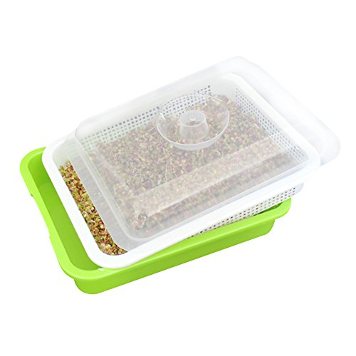 Seed Sprouter Tray,SHZONS Soil BPA Free Nursery Tray Seedlings WheatGrass Grower Planter Hydroponics Seed Germination Tray Plate for Garden Home Office,1.28×1.02×0.45in - Grow Alfalfa Sprouts